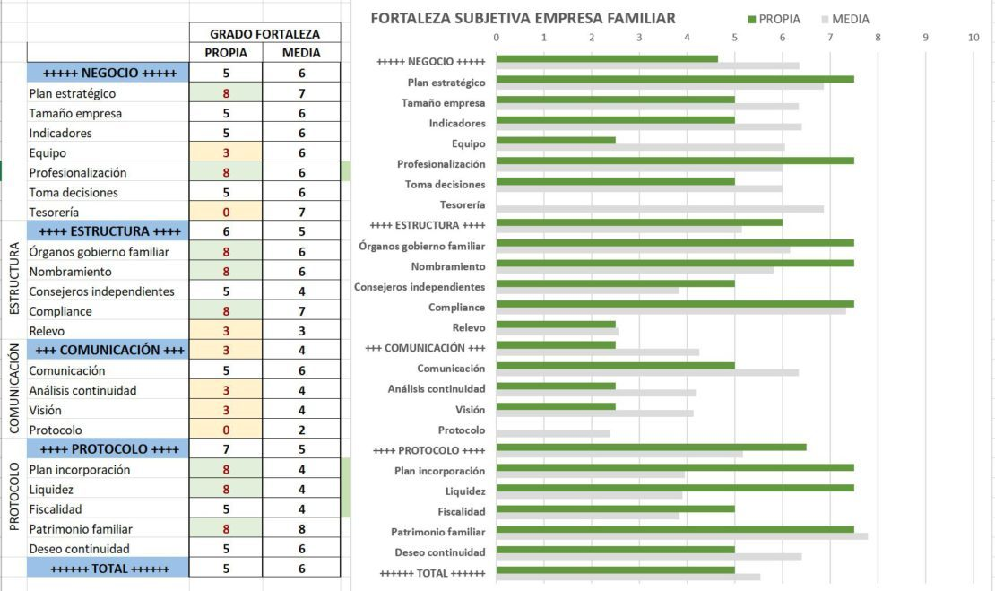 Diagnóstico de empresa familiar